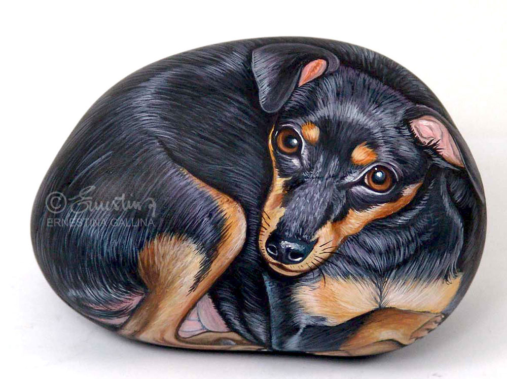 Miniature pinscher hand painted on stone