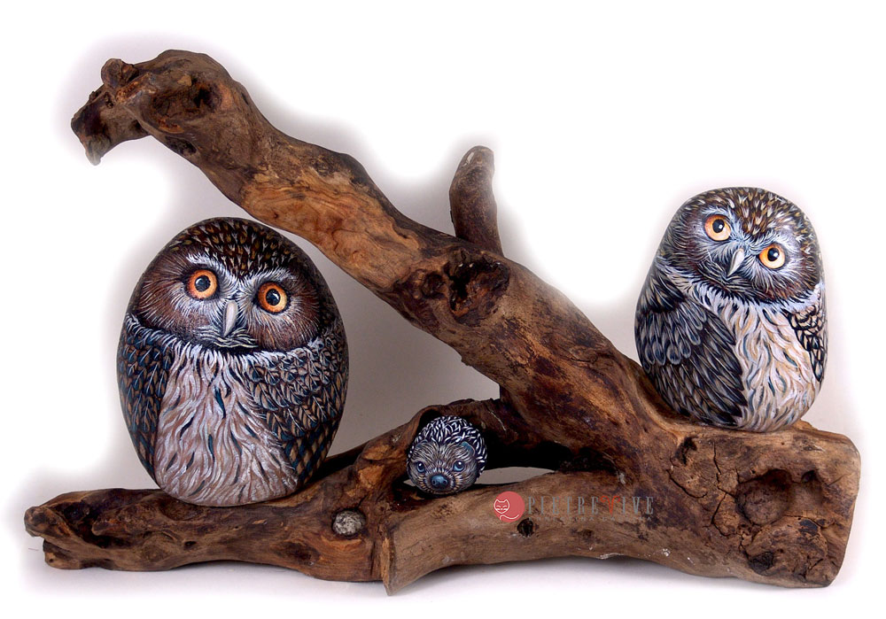Owls hand painted on rock