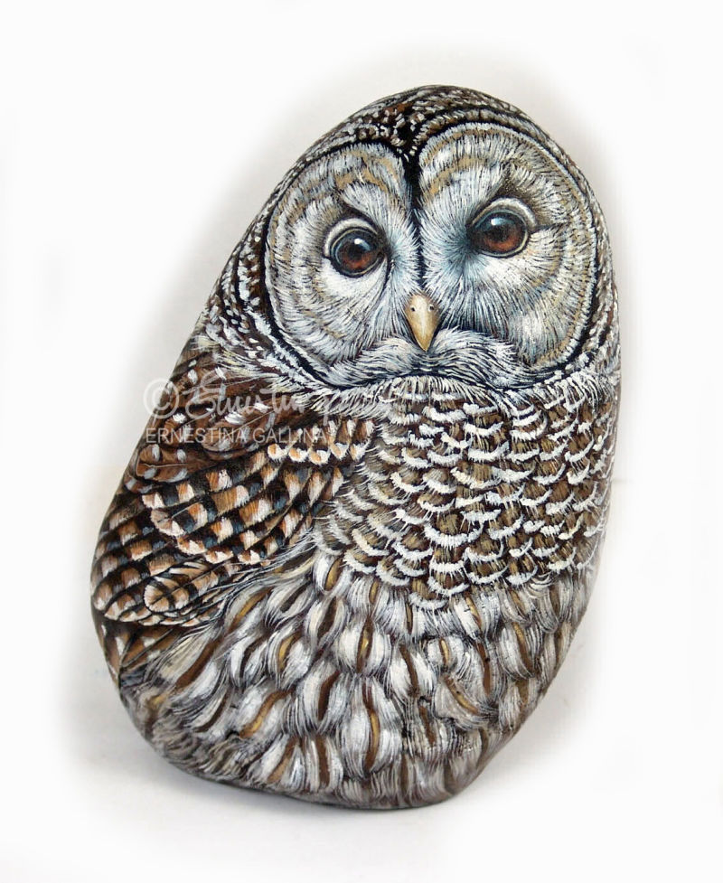 Owl painted on stone